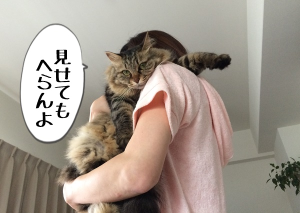 猫を抱く管理人