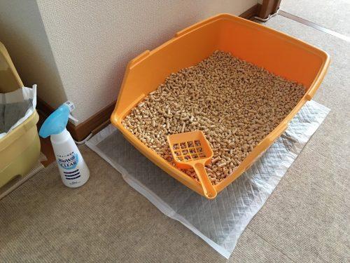 猫用トイレの使用例