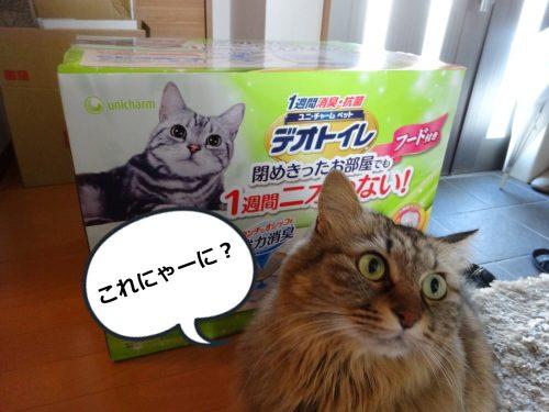 猫用デオトイレが届いた
