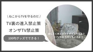 猫がTVの裏に入る、TVに乗るのを防ぐ方法