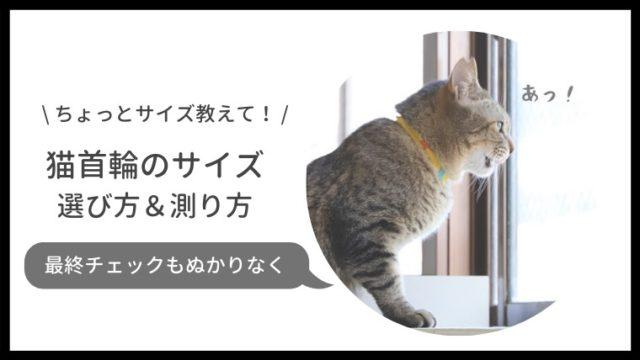 猫の首輪のサイズの選び方、測り方