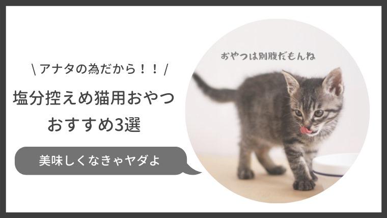 塩分控えめの猫用おやつおすすめ3選