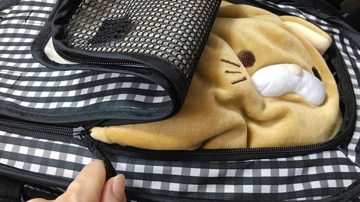ねこをキャリーバッグに入れるイメージ
