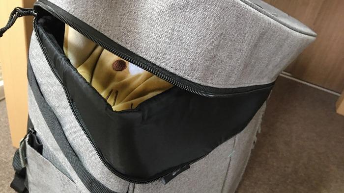 猫をキャリーバッグに入れるイメージ