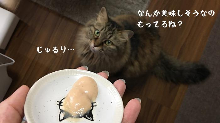 猫用おやつピュアちゅーるのレビュー