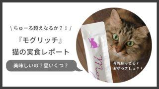猫用おやつモグリッチの安全性や評判は?