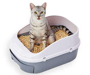 おすすめ猫用システムトイレ・ペティオ