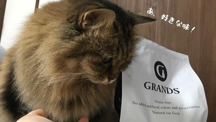 グランツサーモンを食べる猫