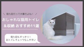 とにかくおしゃれな猫トイレ・収納11選!イ