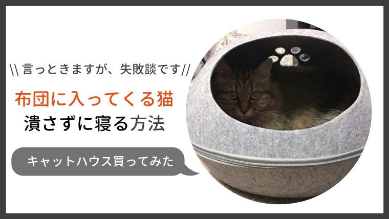 猫と一緒に寝ると潰しそう…なのでこんなキャットハウス(猫用ベッド)買ってみた