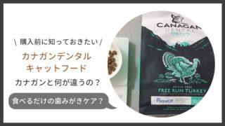 カナガンデンタルの口コミ評判・食べるだけのデンタルケアとは?