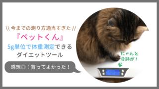 猫の体重測定に小型ペットスケール「ペットくん」を買ったワケ