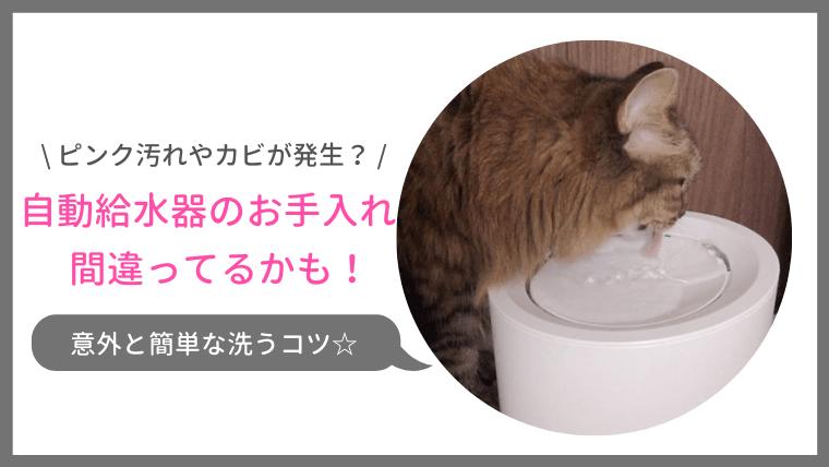 洗い方間違ってない?自動給水器のピンク汚れやカビを防ぐお手入れ方法をご紹介!