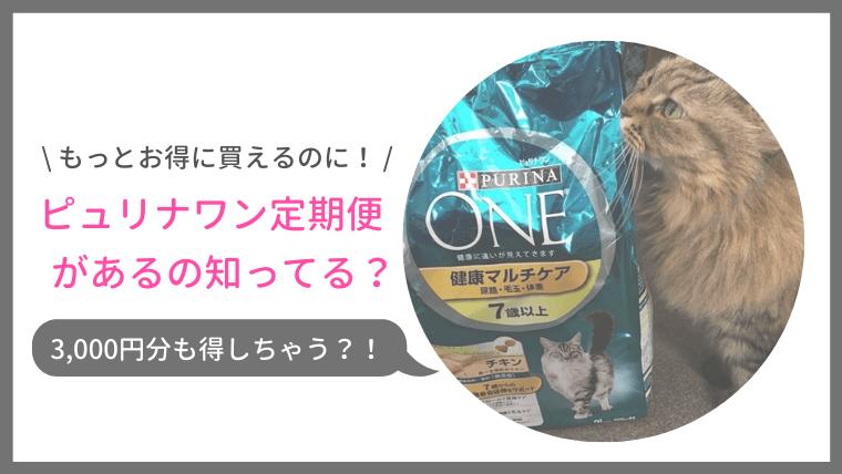 市販キャットフードのピュリナワンをお得に購入する方法、猫の年齢や好みで選べる!